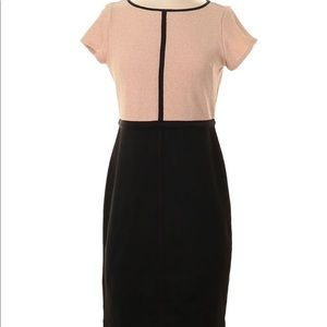 Ann Taylor Colorblock Dress Size 14